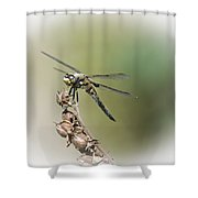 Naked Lunch Shower Curtain