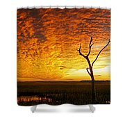 Naked Tree Shower Curtain