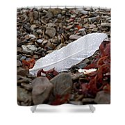 Nameless Feather 1 Shower Curtain