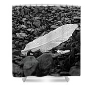 Nameless Feather 2 Shower Curtain