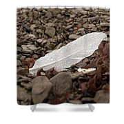 Nameless Feather 3 Shower Curtain