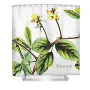 Nanea Flower Art Shower Curtain