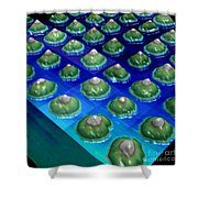 Nanoparticles, Lithium Metal, Afm Shower Curtain