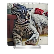 Nap Number Ten Shower Curtain