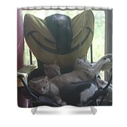 Nap Time For Kitties. Shower Curtain