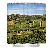 Napa Valley California Panoramic Shower Curtain