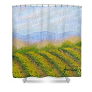 Valley Vineyard Shower Curtain