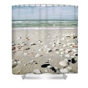 Naples Florida Xv Shower Curtain