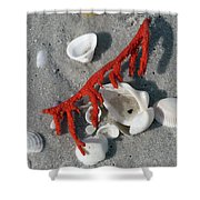 Naples Florida Xvi Shower Curtain