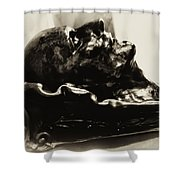 Napoleon's Death Mask Shower Curtain