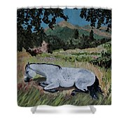 Napping Horse Shower Curtain