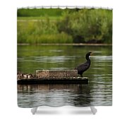 Naptime Lookout Shower Curtain