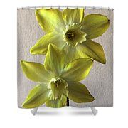 Narcissi Shower Curtain