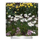 Narcissus And Daffodils In A Spring Flowerbed Shower Curtain