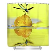 Narcissus - Damselfly Reflected In The River Shower Curtain
