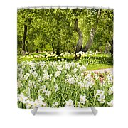 Narcissus In Apple Garden Shower Curtain