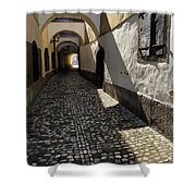 Narrow Cobblestone Alley Ribji Trg Or Fish Square From Cankar Qu Shower Curtain