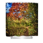 Narrow Is The Path Shower Curtain