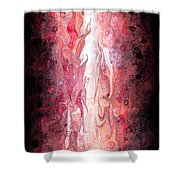Narrow Passages Shower Curtain