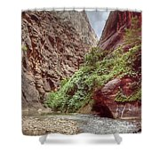 Narrows Shower Curtain