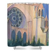 National Cathedral Shower Curtain by Don Perino
