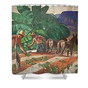 National Park Service - Tropical Country Shower Curtain