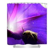 Native Bee On A Purple Flower Shower Curtain