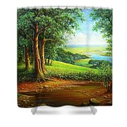 Native Places. Shower Curtain