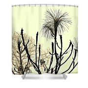 Natural 2 13b Shower Curtain