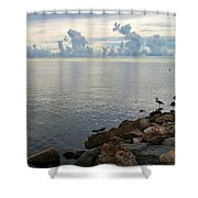 Scapes 7 17 Shower Curtain