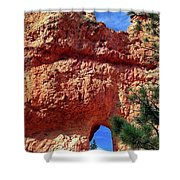 Natural Arch Shower Curtain