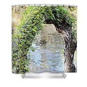Natural Archway Over Hillsborough River Shower Curtain