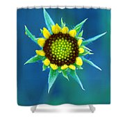 Natural Art Shower Curtain