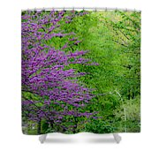 Natural Background Shower Curtain