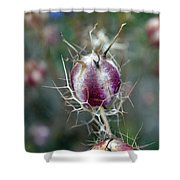 Natural Background With Purple Spiky Bulbs. Shower Curtain