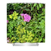 Natural Background With Vegetation And Purple Flowers. Shower Curtain