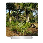 Natural Beauty Of Florida Shower Curtain