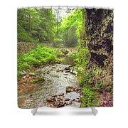 Natural Bridge Valley Shower Curtain