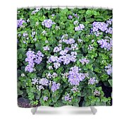 Natural Bush With Purple Small Flowers. Shower Curtain