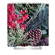 Natural Christmas 3 Shower Curtain