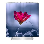 Natural Dominance Shower Curtain