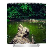 Natural Fishing Pier Shower Curtain