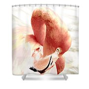 Natural Flare Shower Curtain