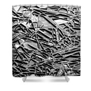 Natural Geometry Black And White Shower Curtain