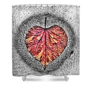 Natural Heart Shower Curtain