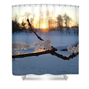 Natural Ice Animals In Winter Shower Curtain