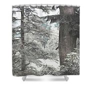 Natural Magnetism. Shabby Chic Collection Shower Curtain