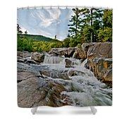 Natural Masterpiece Shower Curtain