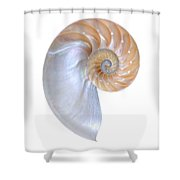 Natural Nautilus On White Vertical Shower Curtain