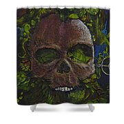 Natural Order A Declaration Of Victory And Peace Shower Curtain